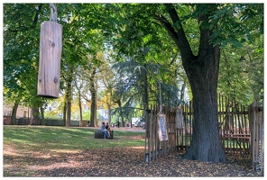 20180908-4124-Nancy Bois d arbre
